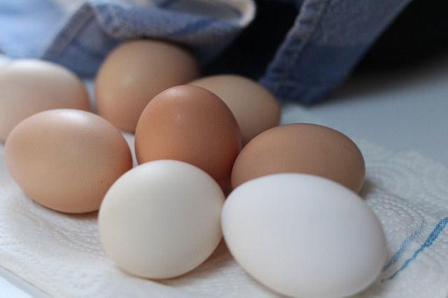 Análise Facts ovos Nutrição