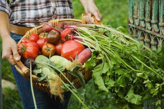 Vegetais para uma dieta saudável